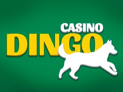 Casino Dingo screenshot